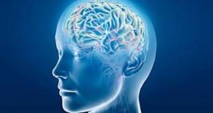 beyin-tumoru