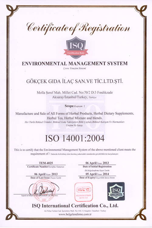 iso2004
