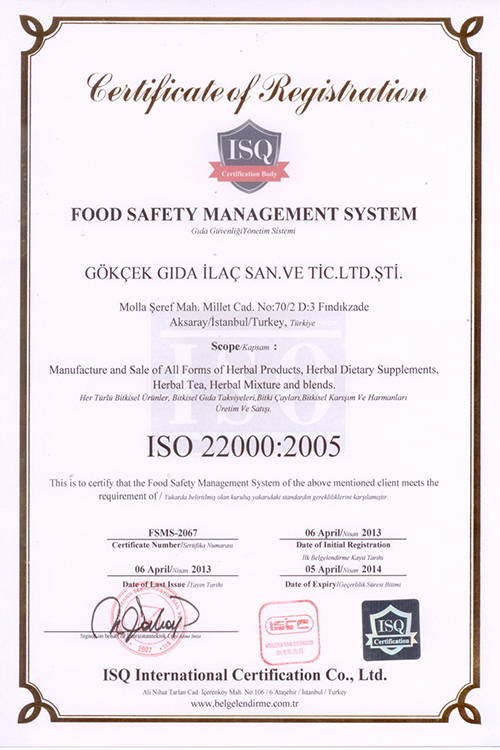 iso2005